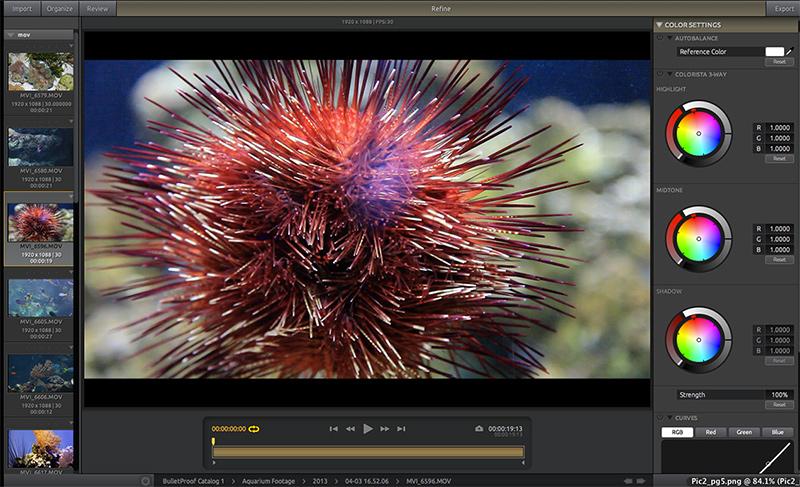 "Red Giant Software: ""BulletProof"" screenshot"