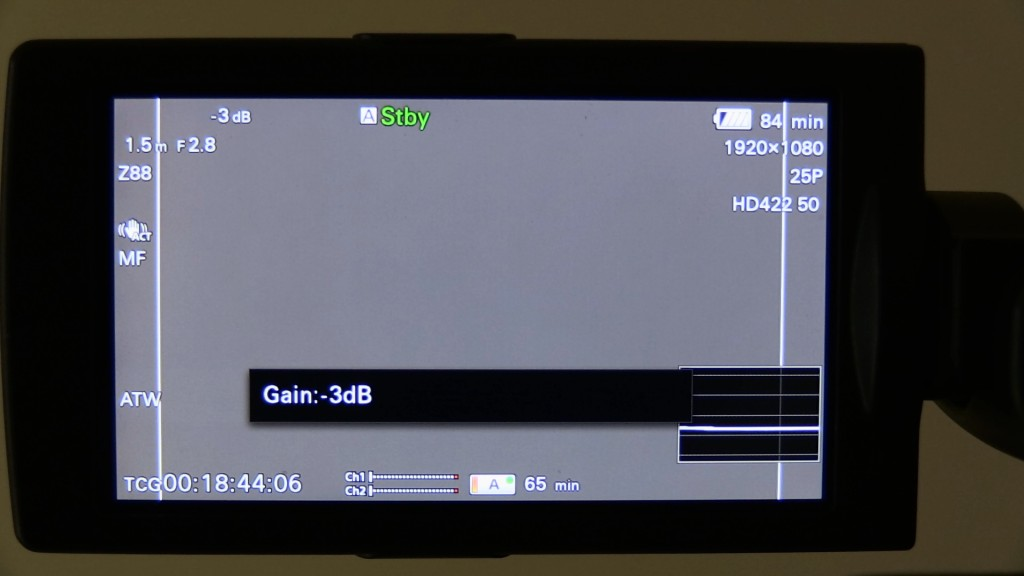 Sony PXW-X180 massively annoying warnings on screen