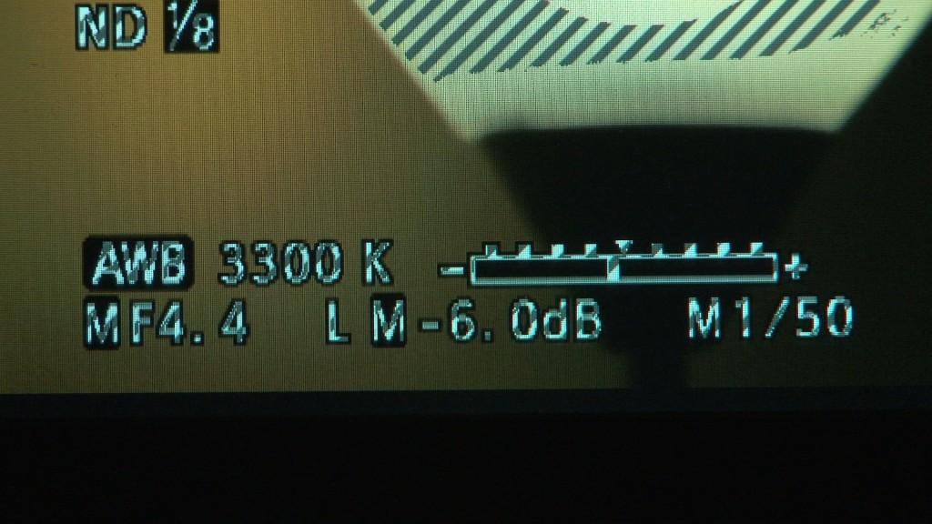 Aputure VS-2 zebras on camcorder text